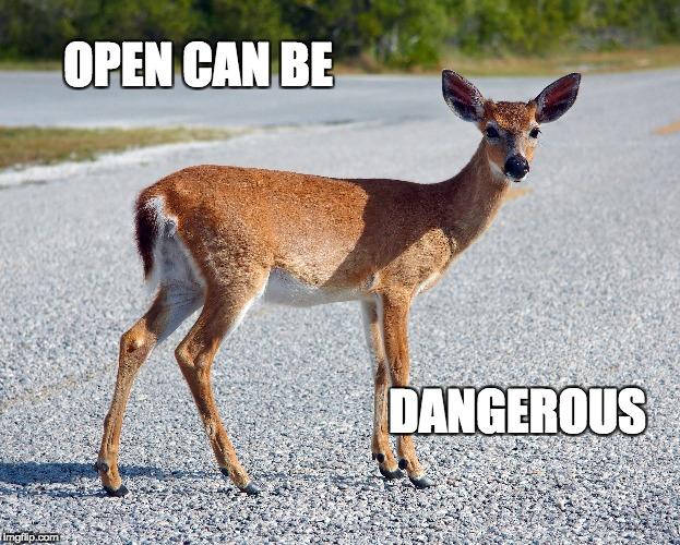 opencanbedangerous